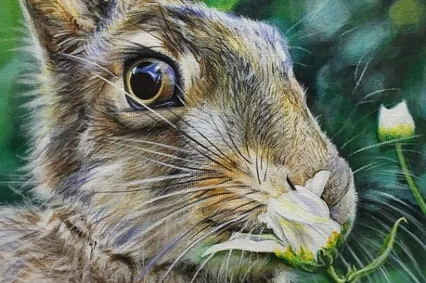 Hare Acrylic by Louise Collins / Banstead Art Group