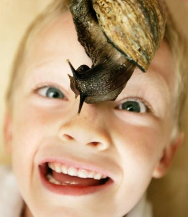 Mum's the word with Angellica Bell: My son's slimy snails are testing my tolerance
