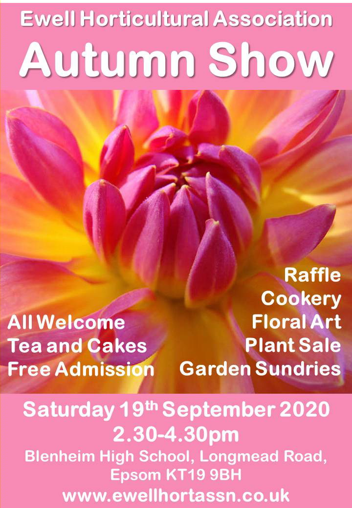 Ewell Horticultural Association's Autumn Show