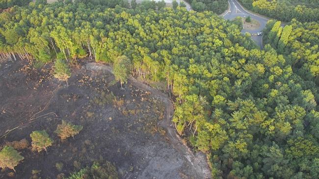 Image by Surrey SAR shows extent of devastation in the Chobham Common fire. Image: SurreySAR
