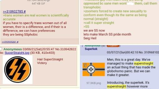 Various 4Chan boards showcasing the planning of said movement.