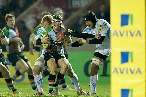 Optimistic: Tom Williams insists Quins have never been in better shape
