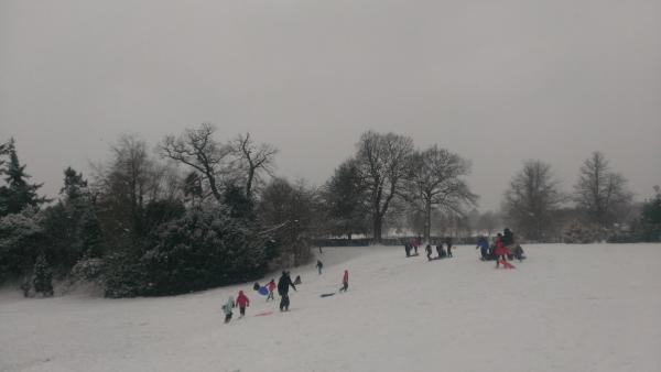 Sledging in Nonsuch Park