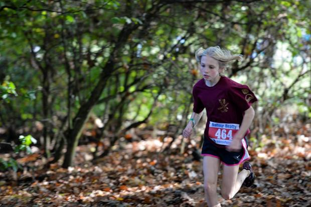 Surrey Comet: Winner: Herne Hill Harriers Alex Brown led the club's charge by winning the U13s competition