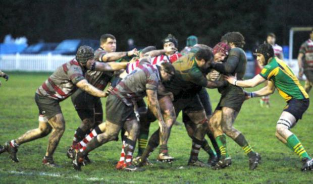 Solid: The Rosslyn Park pack on the drive during the 28-6 win over Henley Hawks on Saturday              All pictures: David Whittam