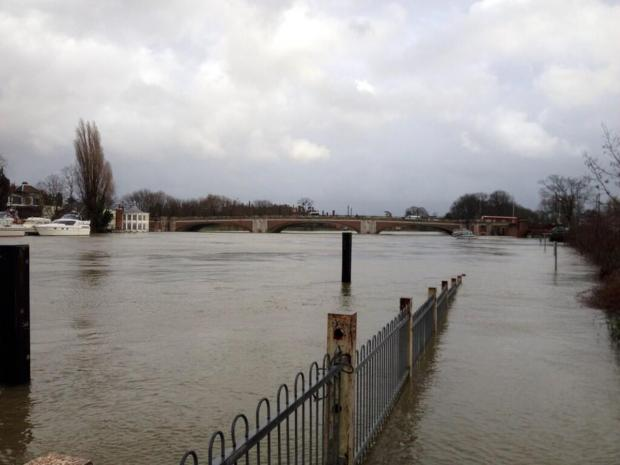 Flooded: The Thames has burst its banks at Hampton