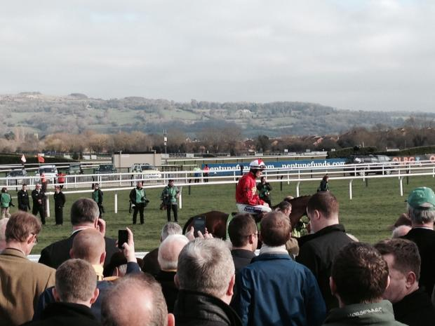 The New One parades prior to the Champion Hurdle