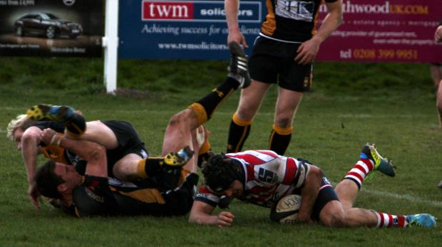 Surrey Comet: Still trying: Sam Shires goes over for Park at Esher last weekend             Picture: Da