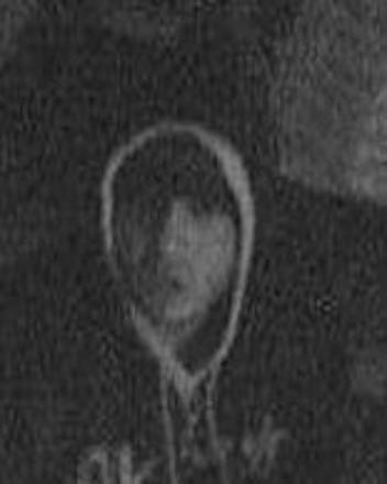 Police have released this CCTV image