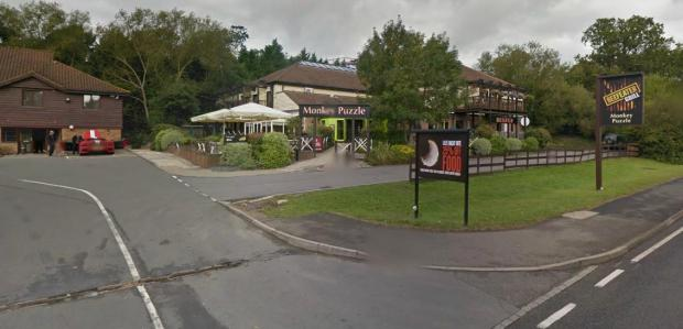 Drinker at Monkey Puzzle pub suffers 'slit throat' in apparent suicide attempt Image: Google Streetview