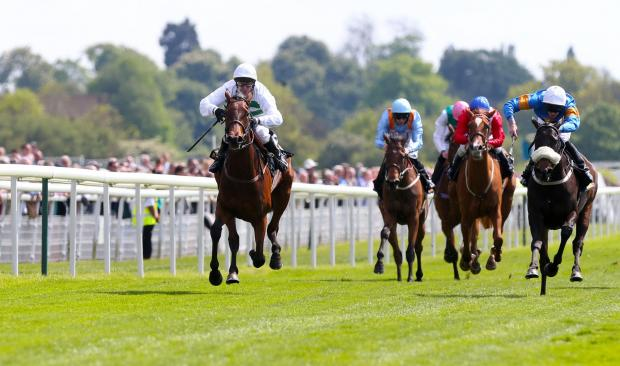 Royal Ascot is on Saturday, but there are plenty of races to go before then.