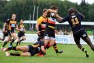 Stopped: Esher's Paul Olima, right, moves in to stop Richmond try scorer Will Browne in Saturday's clash at the Athletic Ground