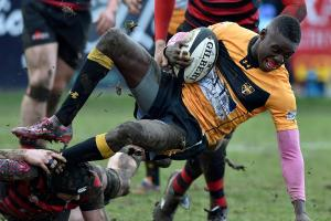 Esher: Es are committed to Championship return