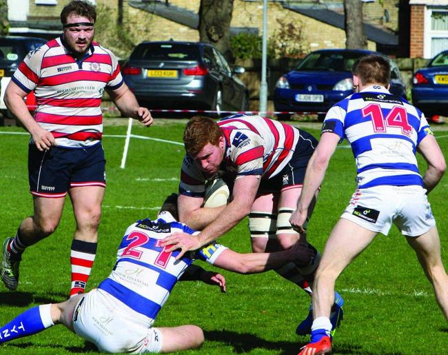 Coming through: Hugo Ellis bagged two tries in Park's win over Tynedale last weekend  	                Picture: David Whittam