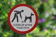 Tarmac isn't the answer for dog poo