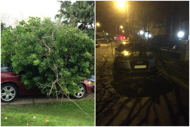 A tree on a car in New Malden and an earlier fallen tree on an Audi in Tolworth