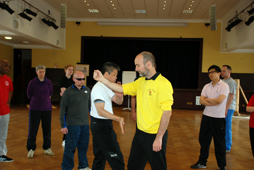 Ip Man Wing Chun Kung Fu Classes with Master Michael Tse