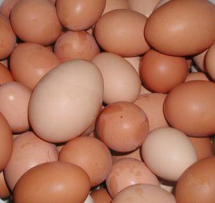 Surrey Comet: Shopkeepers ban youngsters from buying eggs